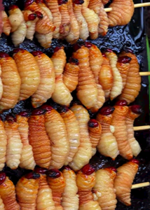 nutritional values of palm tree worms