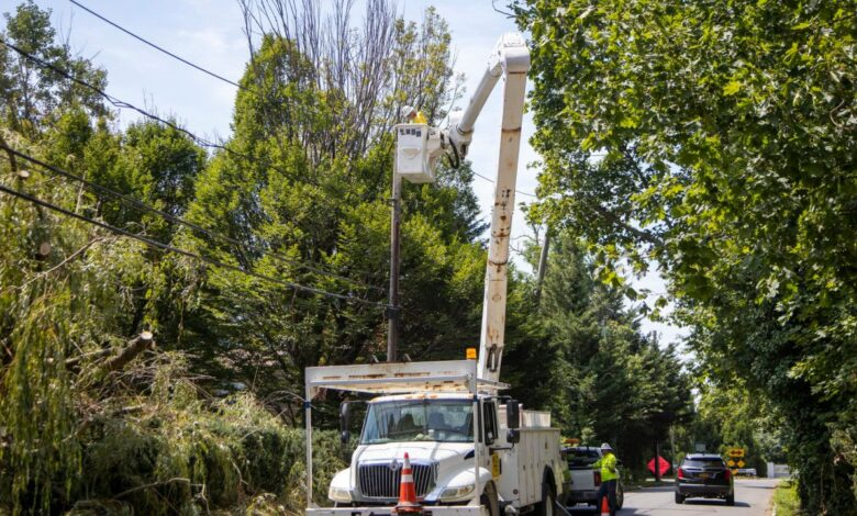 Photo of Report: PSEG makes progress but LIPA concerns linger on storms