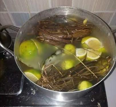 Boil 3 Seeds Of Garlic And Ginger With These 3 Leaves To Cure Malaria And Typhoid Effectively