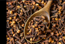 Photo of Health Benefits Of Cloves and Milk