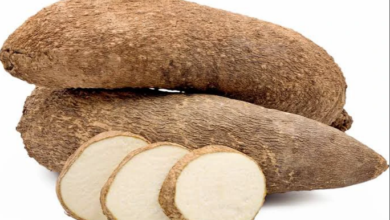 Photo of Health benefits of eating yam and what you need to know about it