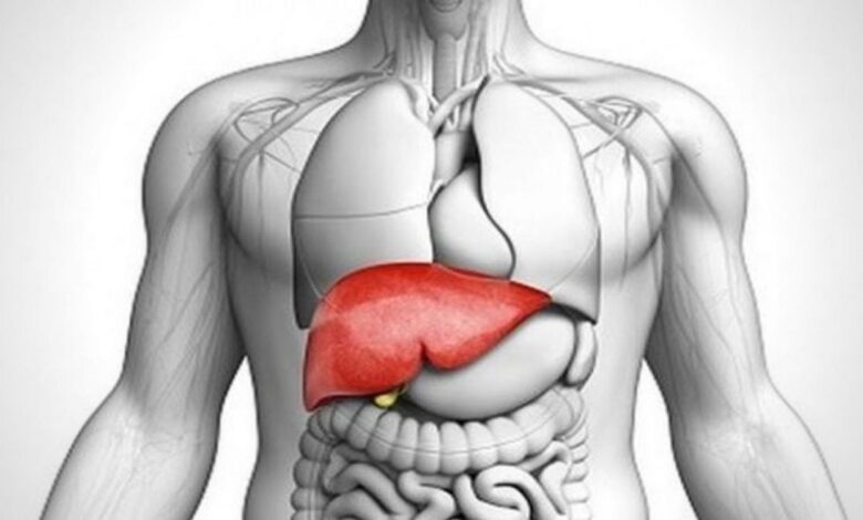 Photo of Healthy liver foods you must consume regularly
